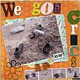 We_got_crocs